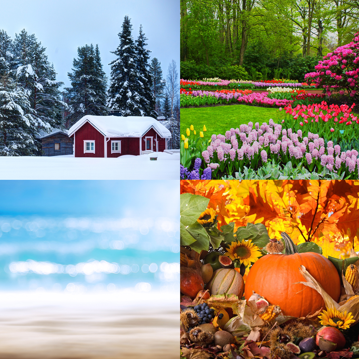 Le quattro stagioni dell'armocromia.