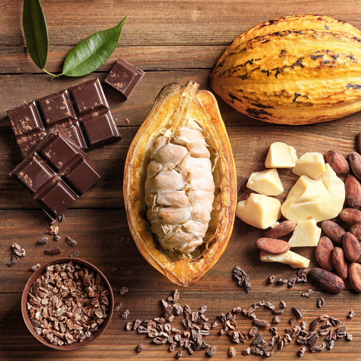 come si produce il burro di cacao e proprietà cosmetiche