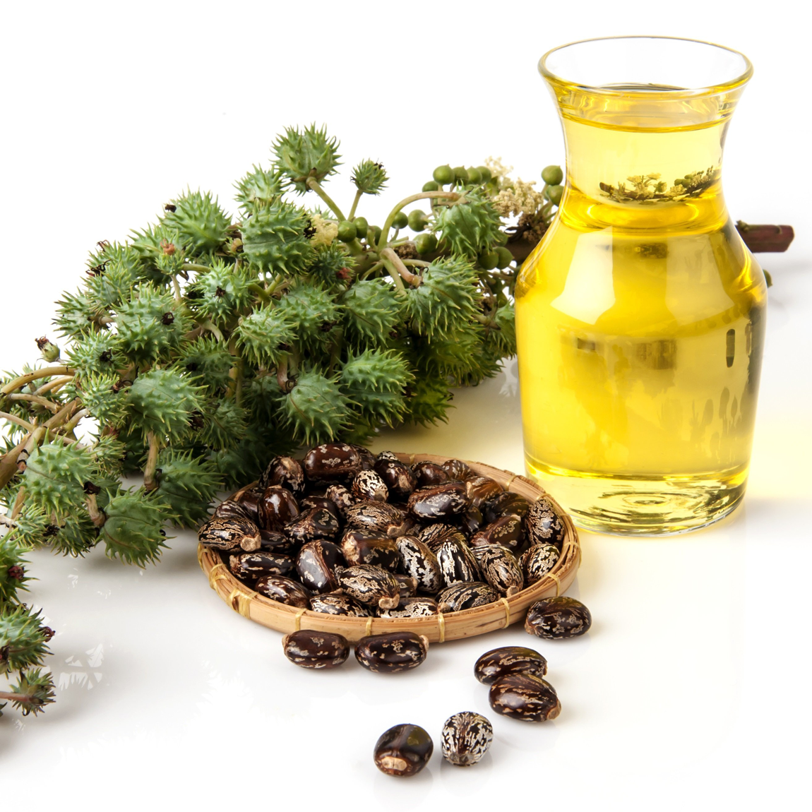 The beneficial properties of castor oil for skin and hair